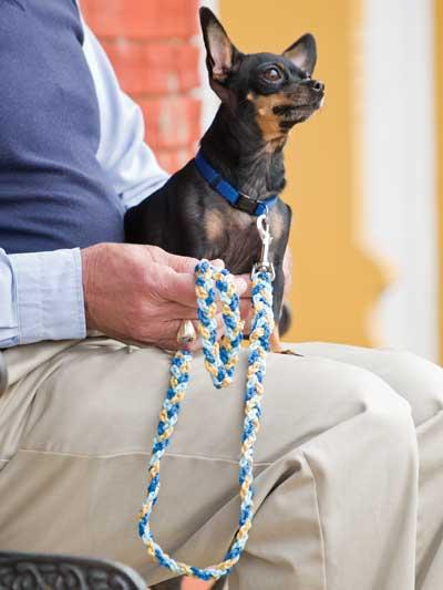 Free Crochet Pattern Chain Stitch Dog Leash
